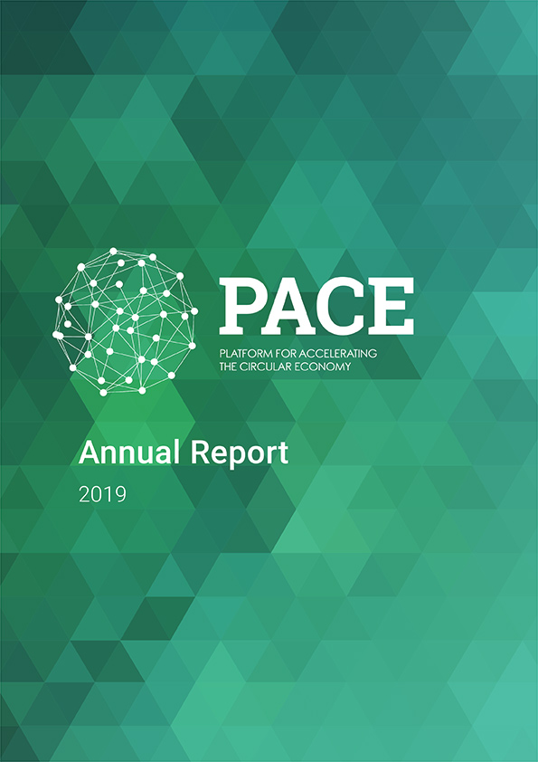 PACE report cover image