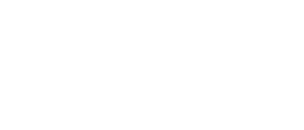 PACE footer logo image